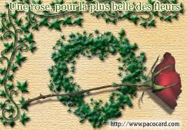 http://www.pacocard.com/carte-postale.php?theme=amour&carte=une-rose-pour-une-belle-fleur