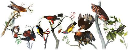 226ème anniversaire de John James Audubon