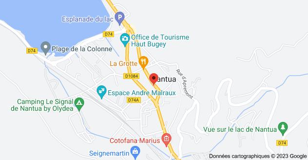 36 Rue du Collège, 01130 Nantua: carte