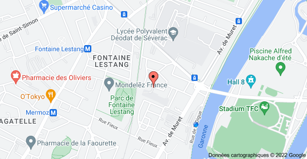 19 Rue Théodore Rivière, 31300 Toulouse: carte